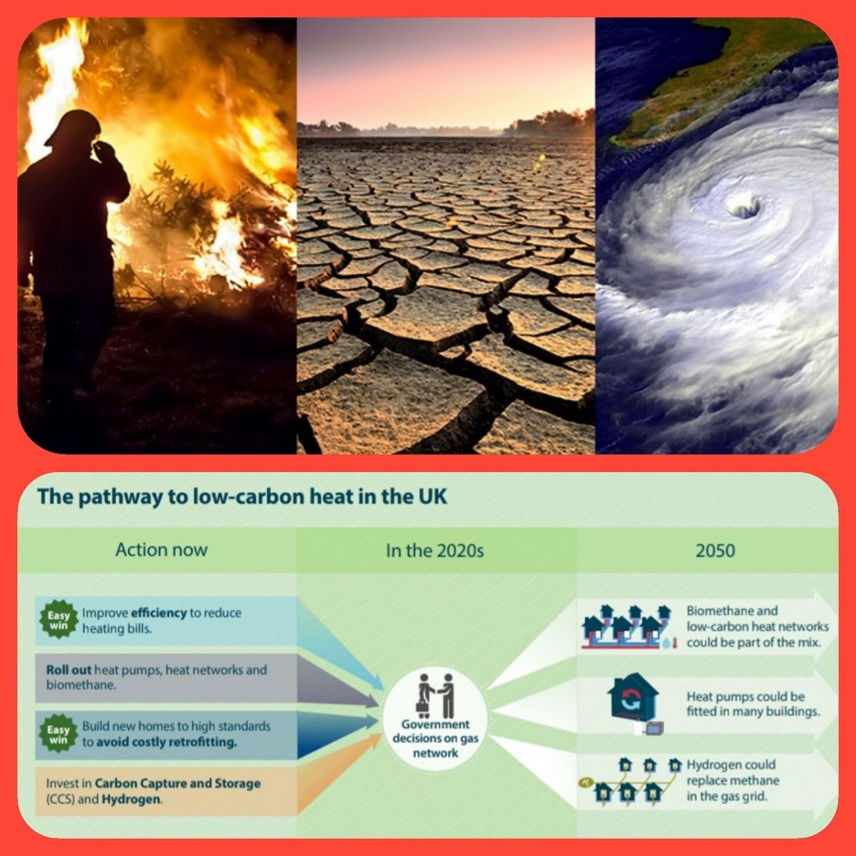 Climate Emergency: What's your contribution?